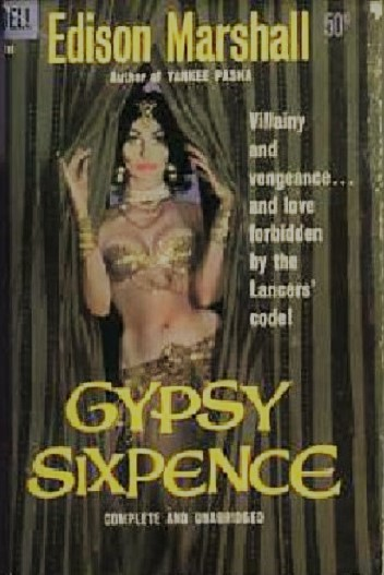 Gypsy Sixpence Novel